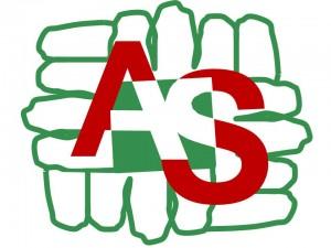 Logo AvSolid V6